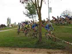 <a href='/uploaded/photo/2016-saumur-cyclo-cross-5803d20cabe51.jpg' style='color : #fff;'>(Télécharger)</a>